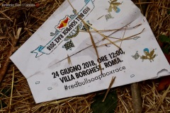 38-RED-BULL-2018-Roma